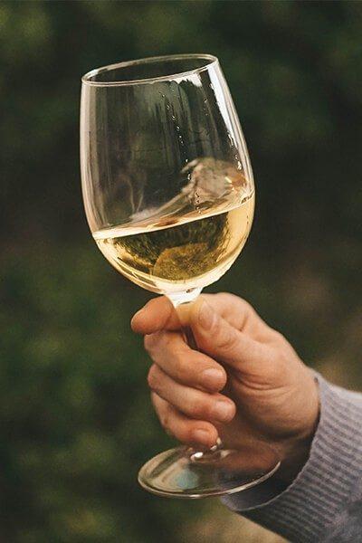 wine-img-1